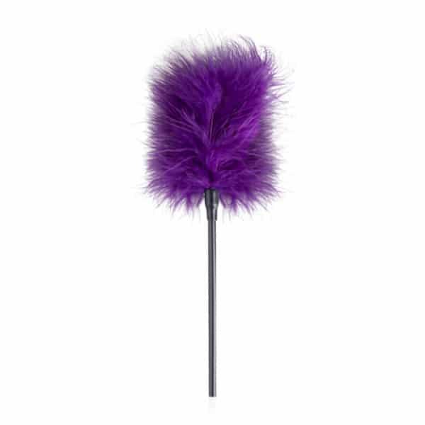 Secret Pleasure Chest Purple Apprentice Kietelaar Clitoris Stimulatie Veer