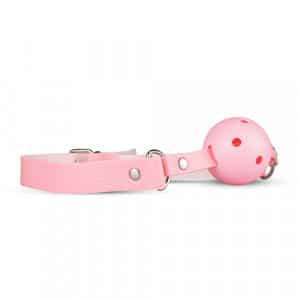 Secret Pleasure Chest Pink Pleasure Knevel BDSM